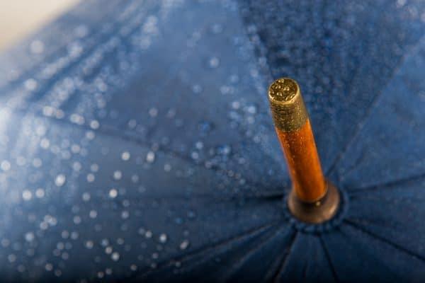 LoGU Wooden Walker - with gold tip printed umbrellas